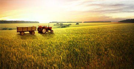Seguro Rural