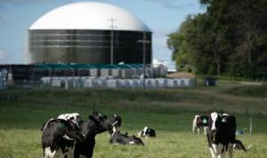 Projeto de Geração de Energia Elétrica com Biogás.